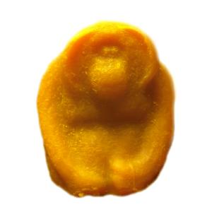 Orangutan Soap